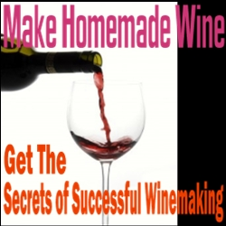 Secrets To Winemaking